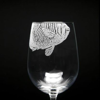 rpm_f_butterflyfish