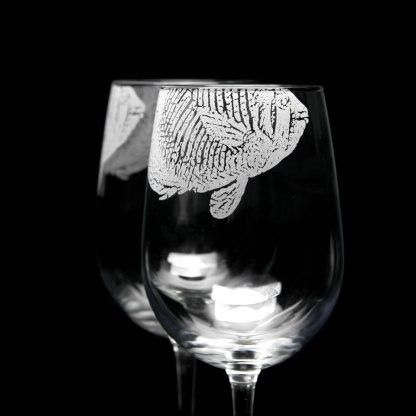 rpm_f_butterflyfish_b