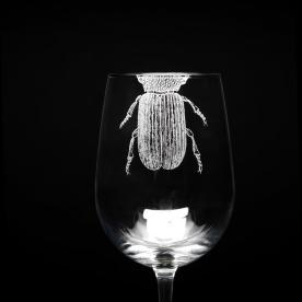 rpm_i_beetle1